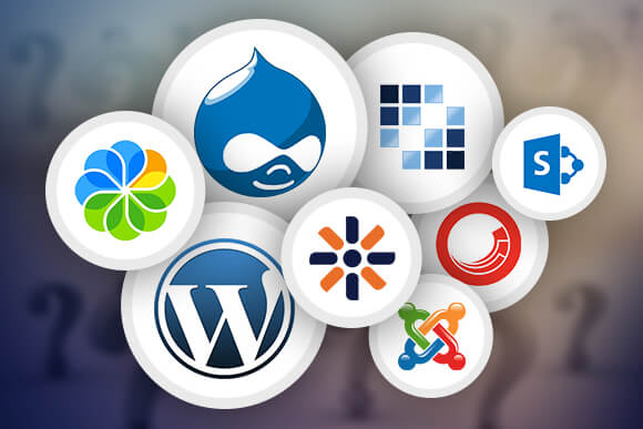 Which CMS is better for your business | Open Source vs Closed Source