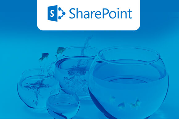 5 Best Practices to build up a SharePoint Migration Plan