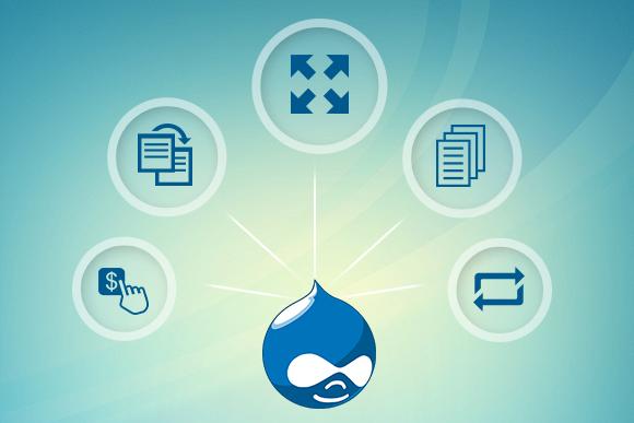 5 Reasons Why Drupal is Popular for Enterprise Portal Development